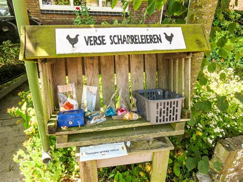 Island escape? Texel has it all! | Ipanema travels to