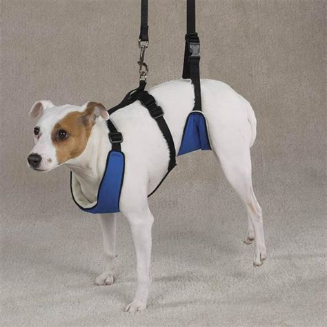 Lift & Lead Dog Mobility Harness   PupLife Dog Supplies