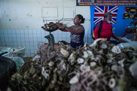 Counting on the Trendy to Revive Kava, a Traditional Drink