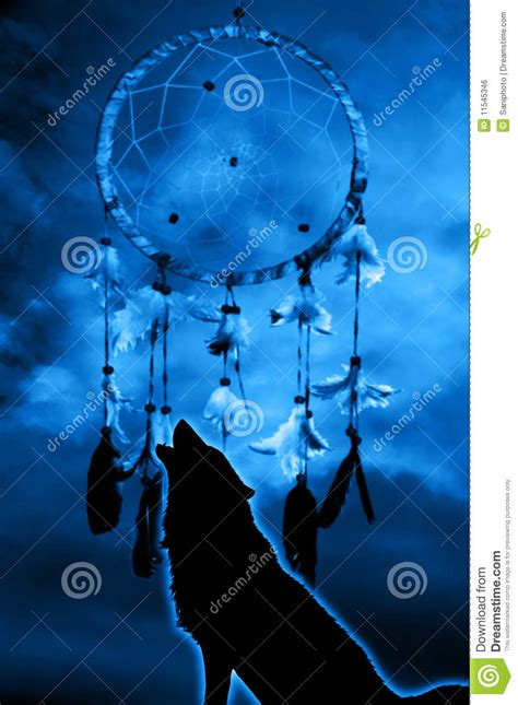 Wolf and dream catcher stock illustration