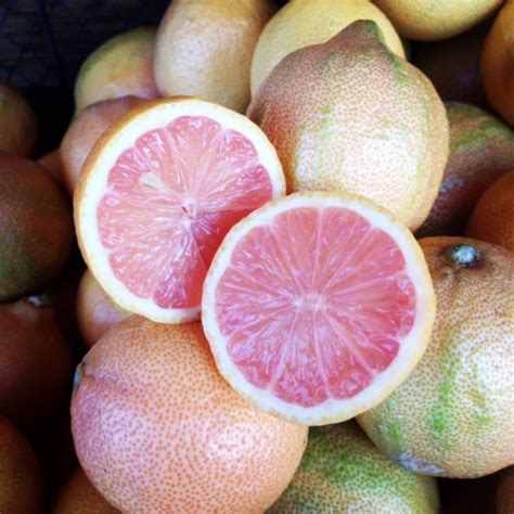 Pink Lemons Information, Recipes and Facts