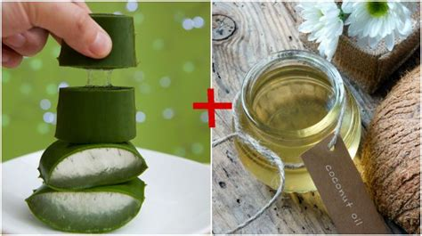 6 Amazing Benefits of Aloe Vera for Hair, Skin and Weight