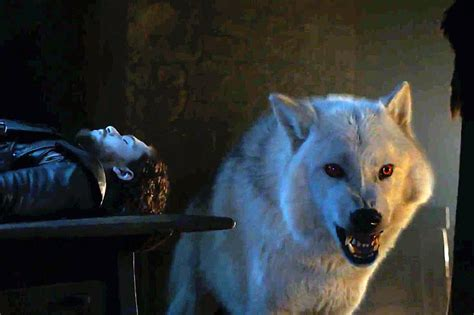 Jon Snow's direwolf Ghost will be returning for the final
